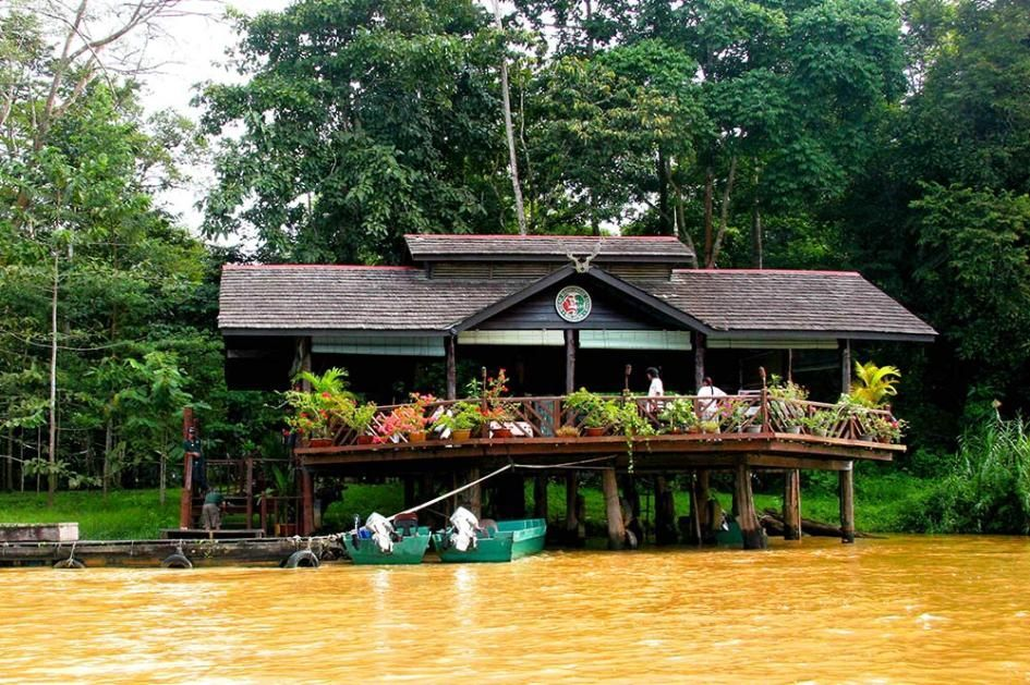 Sukau rainforest lodge.jpg