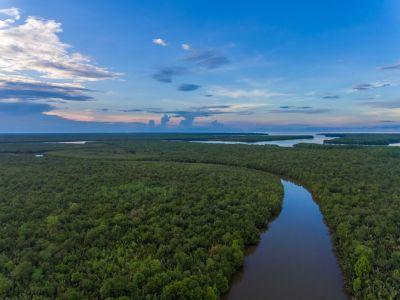 Sungai Kapur (DJI_0013).jpg