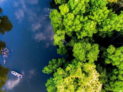 Sungai Kapur (DJI_0077).jpg