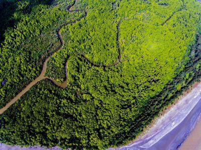 Sungai Kapur (DJI_0143).jpg