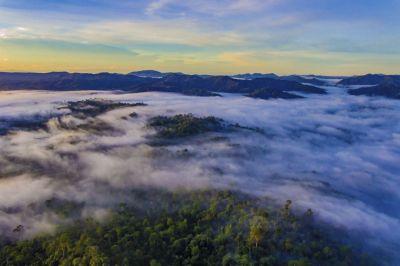 Danum Valley (DSC06131.jpg).jpg