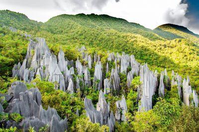 Mulu_National_Park.jpg