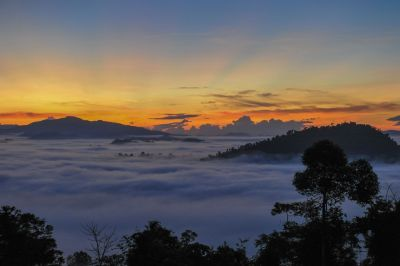 Sunrise Borneo Rainforest Lodge
