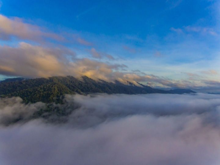 Maliau Basin (DJI_0070).jpg